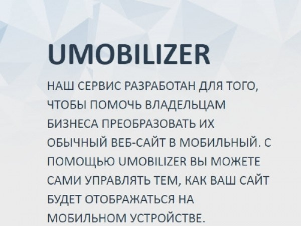 UMobilizer. Бизнес идеи