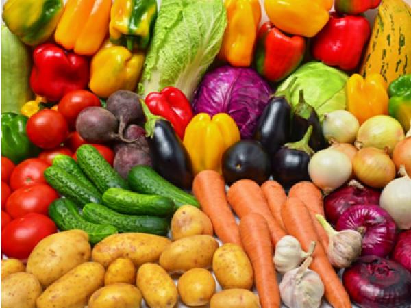 Бизнес по выращиванию овощей - бизнес-план, как начать с нуля 38