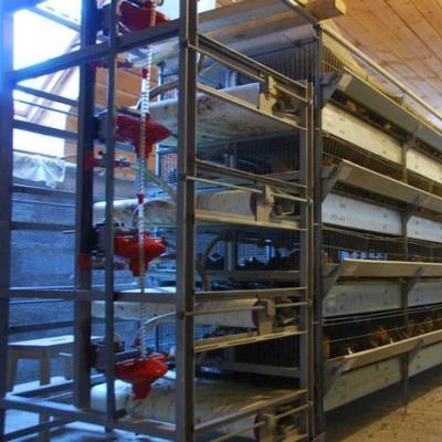 того, что оборудование для перепелиной фермы цена толщине материала